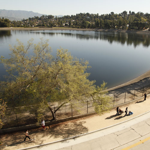 Silver Lake Reservoir Path and Meadow